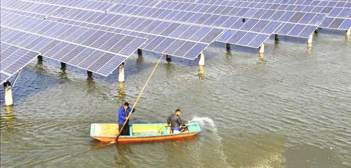 The Photovoltaics Industry and the Traditional Aquaculture Industry