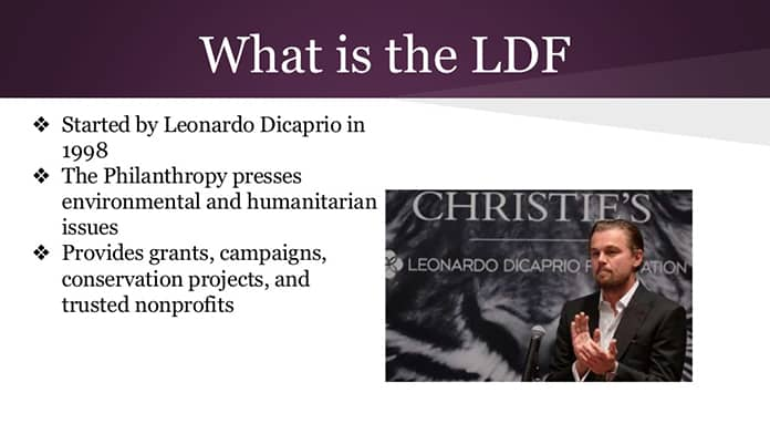 What is the Leonardo DiCaprio Foundation