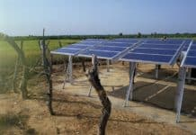 Solar Panels on a Farm, Mali