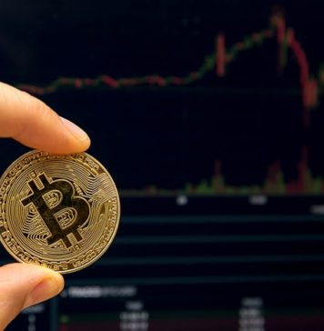 Energy Consumption and Bitcoin Price Fluctuates