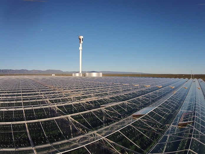 Sundrop Solar Farm at Port Augusta - Picture 3