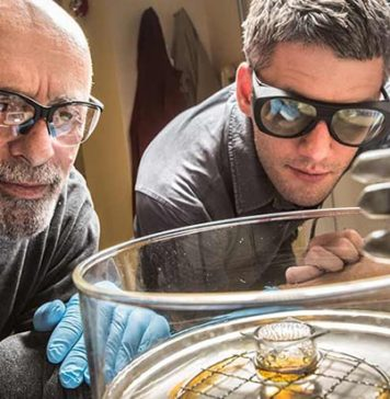 NREL Scientist Dave Moore and Researcher Obadiah Reid