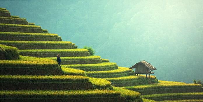 Thailand Sustainable Development Landscape: Farming