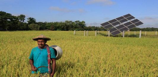 A Bangladeshi Farmer Working on a Farm with Solar PV Installed