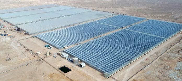 GlassPoint's Miraah Plant in Oman Began Producing Solar Steam in Late 2017