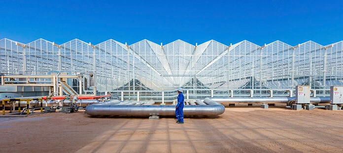 Industrial Concentrated Solar Thermal Installation for Heat and Steam Production