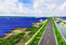 """Wild Energy"": Balancing Nature and Solar Energy Development"