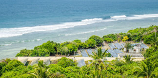 Aerial View of Solar Panels Amongst Coconut Trees on the Paradise Island