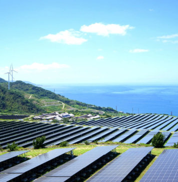 Merchant Solar Projects Are Rising as Deployment Costs Come down to Record Lows