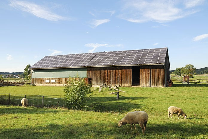 Agrivoltaic Energy System Practice on Farmland: Incorporating the Benefits of Solar Power