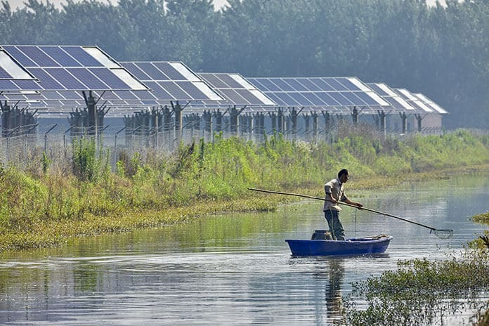 Fisherman Catching Fishes on a Myanmar Pond with Solar Panels Installed