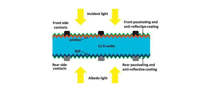Illustration of the Side View of a Bifacial Solar Panel