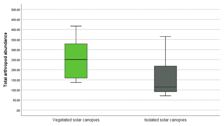 Arthropod Abundance in Vegetated Solar Canopies vs. Isolated Canopies