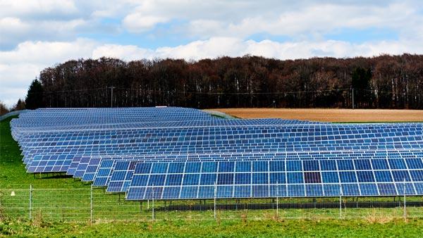 Solar Panel Arrays on a Green Field